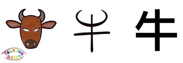 學中文象形字感偏旁字牛