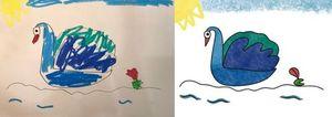 畫畫示範天鵝