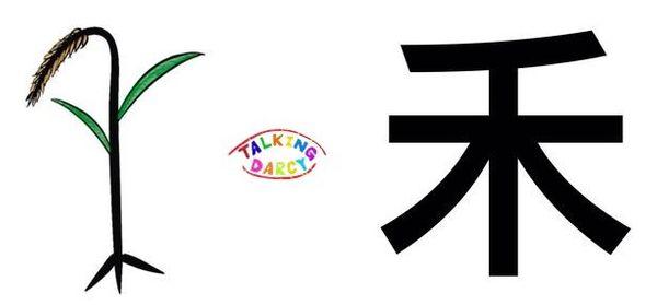 學中文象形字感(Chinese pictograph)禾
