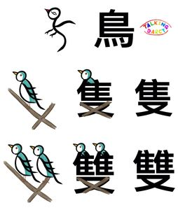 象形字感學中文組字練習單-鳥、隻、雙
