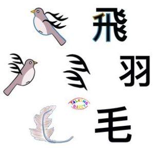 象形字感學中文字練習單-飛、羽、毛